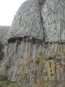 abri de Longetrée à Freycenet-la-Cuche